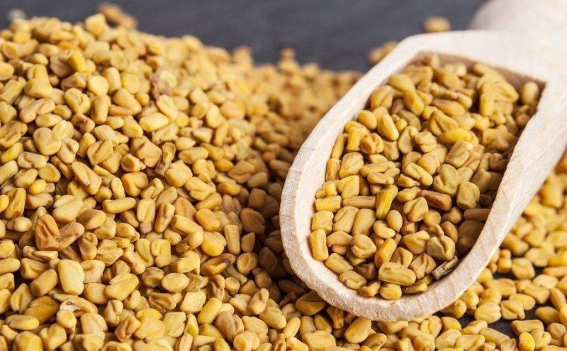 Hintli kadınlar uzun yıllardır süt üretimini teşvik etmek için Çemen otu tohumlarını kullandılar. Ayrıca Ayurveda'da artrit, bronşit ve sindirim rahatsızlıklarında kullanılmıştır. Şimdi, çemen otunun sağlık açısından faydalarına daha yakından bakalım… Çemen otunun faydaları nelerdir? İşte bilinmesi gerekenler…