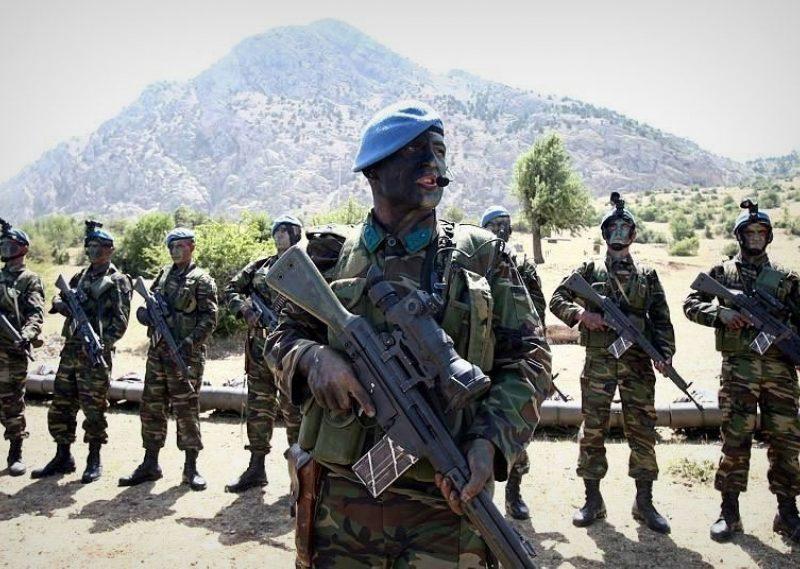 Hatay'da bulunan sınır birlikleri